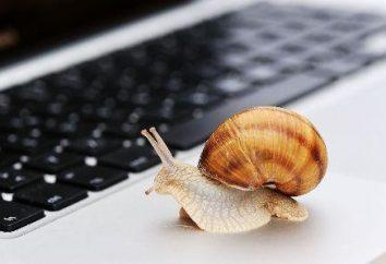 La vidéo sur Inhibe Internet – quoi faire? Pourquoi l'Internet ralentit la vidéo?