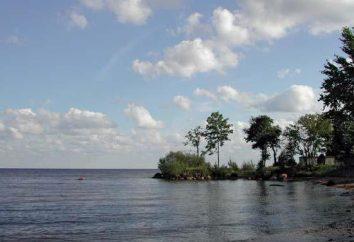 Caractéristiques du terrain et du climat d'Estonie