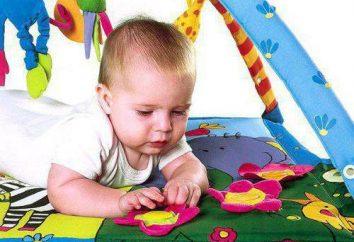 em desenvolvimento tapetes infantis Tiny Love: descrição de modelos populares