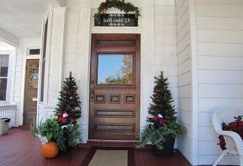 Come isolare una porta d'ingresso in metallo per conto proprio?