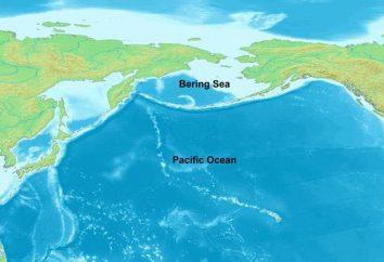 Qual è il più grande mare in Russia? Aprire i misteri della geografia