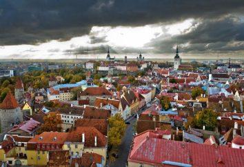 Estoński i skład etniczny ludności
