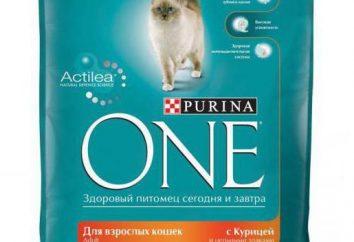 "La comida para gatos ""Purina"": características, comentarios"