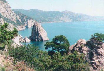 Playas Foros: descripción, descripción, características y opiniones