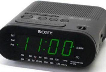 horloge électronique moderne: une large gamme, des possibilités illimitées