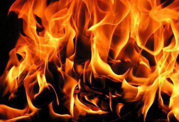 Détermination du feu. Les feux de forêt (forêt, tourbe), la détermination