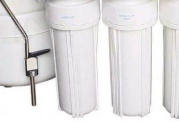 Filtri d'acqua per la casa: l'installazione, la sostituzione, recensioni. Filtro acqua con le mani