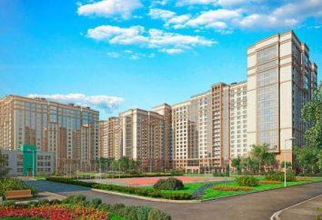 """LCD """"Moskovskye Vorota"""" (San Petersburgo): distribución de apartamentos, desarrolladores y comentarios"""