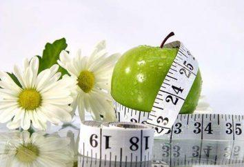 """comprimidos efervescentes """"Eco Slim"""" para perda de peso: comentários, composição, instruções de uso, efeitos colaterais"""