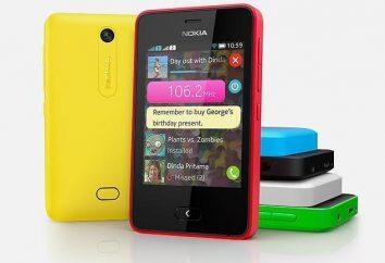 Nokia Asha 501 Telefon: opinie, opisy, specyfikacje