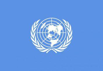 bandeira da ONU: símbolos e cores