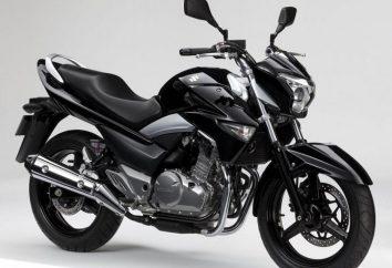 Um modelo completamente novo de fabricantes japoneses – Suzuki GW250