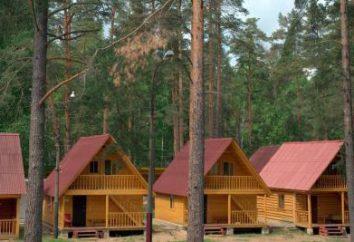 """""""Alol"""" é um centro de recreação. Região de Pskov, acampamento turístico """"Alol"""""""