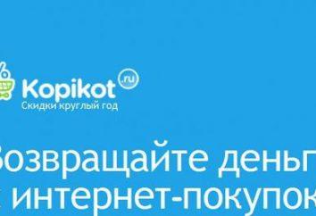 """Internet-shop """"Kopikot"""": opiniões dos clientes"""