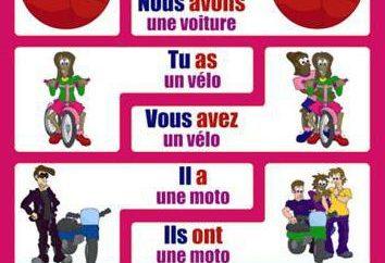 czasownik francuski avoir: koniugacja napięta i nastroju