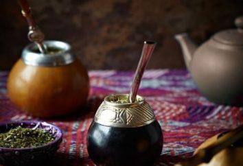 Tè Mate – bevande e non dolori