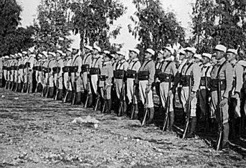 Legione straniera francese: storia, caratteristiche e composizione