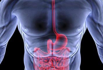 Gastroenterologen, die heilt? Welche Krankheiten Gastroenterologen behandelt: Die vollständige Liste