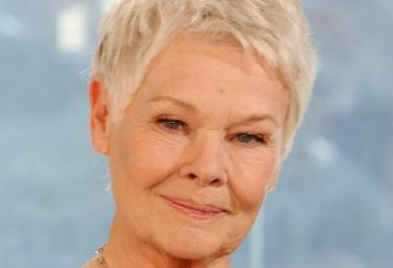 Judi Dench (Judi Dench): filmografía, biografía y vida personal de la actriz (photo)