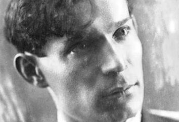 Writer Ivan Makarov: biografia, creatività e fatti interessanti