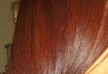 Como o cabelo laminado em casa rapidamente e facilmente?