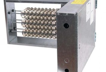 riscaldatore d'aria Duct: vantaggi e svantaggi