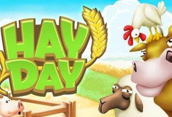 Come installare sul vostro computer Hay Day