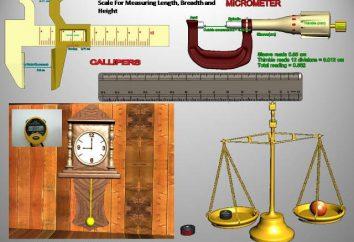 cantidad física – es … La medición de magnitudes físicas. sistema de magnitudes físicas