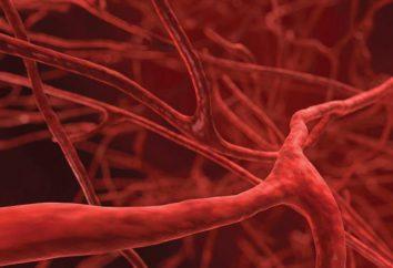 W jaki sposób alkohol ciała, naczynia krwionośne rozszerzają lub umowa?