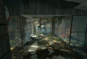 """Gioco Portal 2: il passaggio. """"Portal 2"""": moda, trucchi, codici,"""