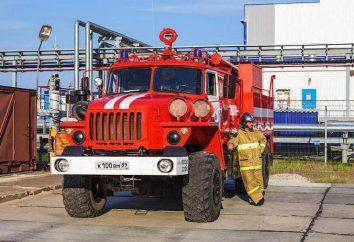 fuerzas y medios de manejo del fuego: estructura, principios de gestión