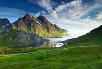 """""""El amor y la protección de la naturaleza!"""": Un ensayo sobre temas de actualidad y recomendaciones para la escritura"""