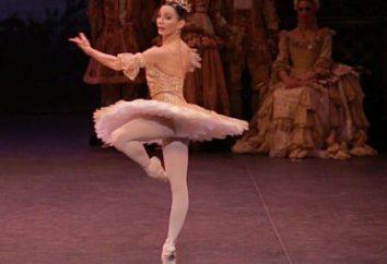 Pirouette – est la rotation du corps autour de son axe. sens littéral et figuré du mot.