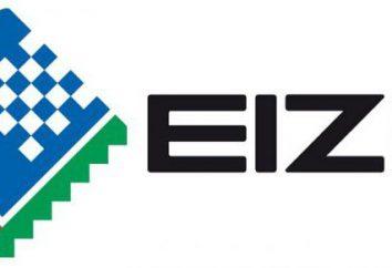 Eizo Monitors: przegląd najlepszych modeli i opinii