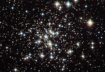 Costellazioni dei segni zodiacali. costellazioni dello zodiaco nel cielo