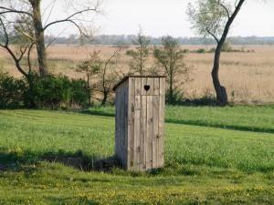 Co trzeba wiedzieć, buduje drewniane toalety z rękami?