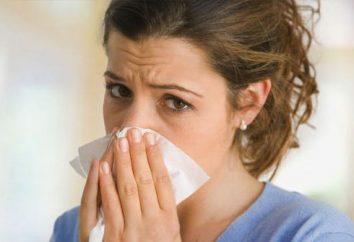 ¿A menudo empezaste la nariz? ¿Qué hacer para determinar las razones?