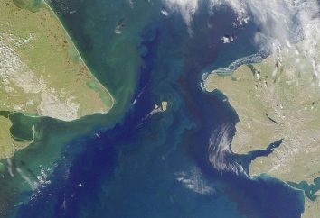 Isla San Lorenzo: descripción, ubicación, fotos