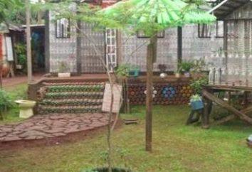Piękne palmy z plastikowych butelek do ogrodu