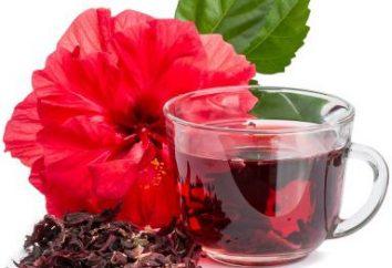 Hibiscus Brewing? Hibiscus: Nutzen und Schaden für den Körper