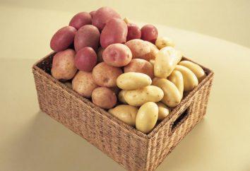 """Ziemniaki """"Rocko"""": charakterystyczne dla danej odmiany, opinie"""