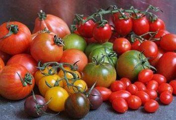 """Tomates apimentados: o benefício e o dano da """"maçã dourada"""""""