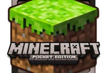 Come installare Minecraft su Android. porto mobile del popolare gioco