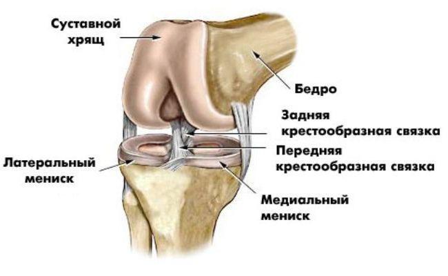 Was ist die MRT des Kniegelenks, wie das zu tun MRI des Knies wird?
