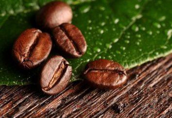 """Das Geheimnis um den besten Kaffee – """"normale"""" Kaffeebohnen"""