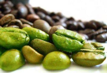 Korzyści i przeciwwskazania: zielona kawa nigdy nie jest za dużo?