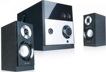 System akustyczny Microlab M880: przegląd i informacje zwrotne