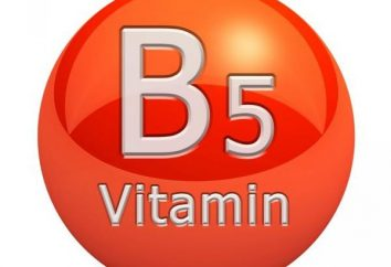B5 (vitamine): mode d'emploi, une description de