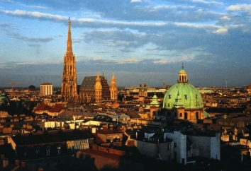 Vienne: avis de valses, des saveurs et de l'atmosphère fabuleuse