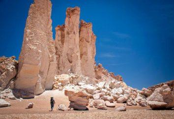 Quello che sappiamo le caratteristiche geografiche che hanno contribuito alla formazione del deserto di Atacama?